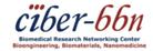 Centro de Investigación Biomédica en Red de Bioingeniería, Biomateriales y Nanomedicina