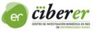 logo_ciber1