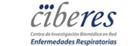logo_ciber2