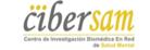 logo_ciber5