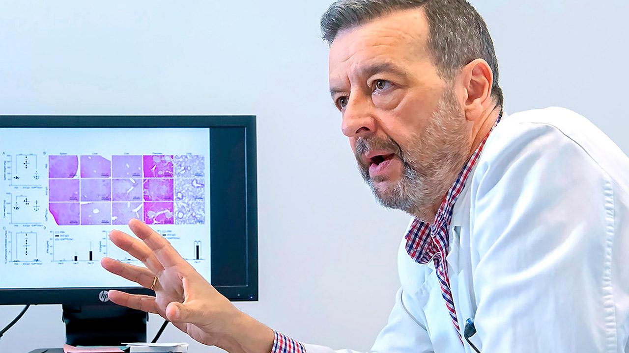 El equipo del Dr. Luis Álvarez Vallina, responsable del grupo Inmuno-Oncología e Inmunoterapia del i+12, coordina un trabajo multicéntrico para el diseño y desarrollo de una nueva molécula antitumoral.