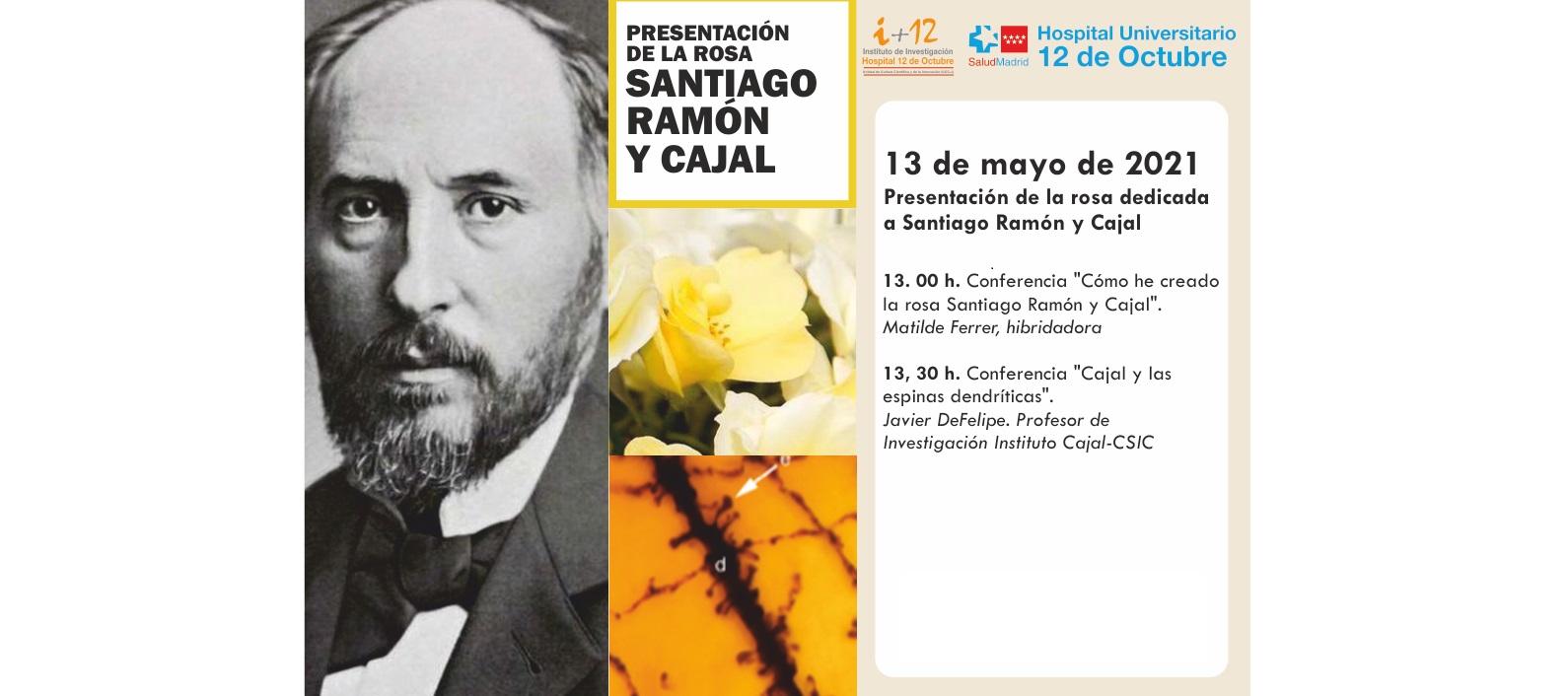 """Conferencia """"Presentación de la rosa dedicada a Santiago Ramón y Cajal"""". Jueves 13 de mayo de 2021, a las 13:00 horas. Evento OnLine en directo."""