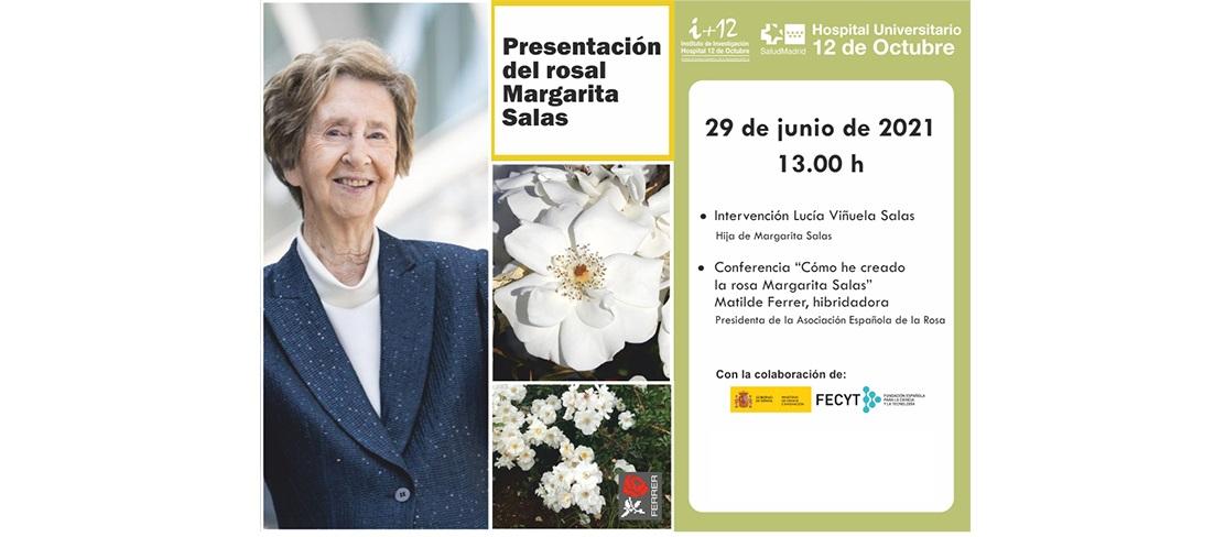 """Acto """"Presentación del rosal Margarita Salas"""". Martes 29 de junio de 2021 a las 13:00 horas. Evento OnLine en directo."""